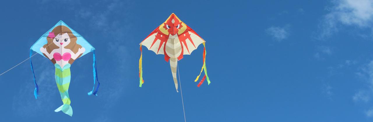 Zoom Kites