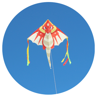 Fundraising Ideas with Dragon Kite by Zoom Kites