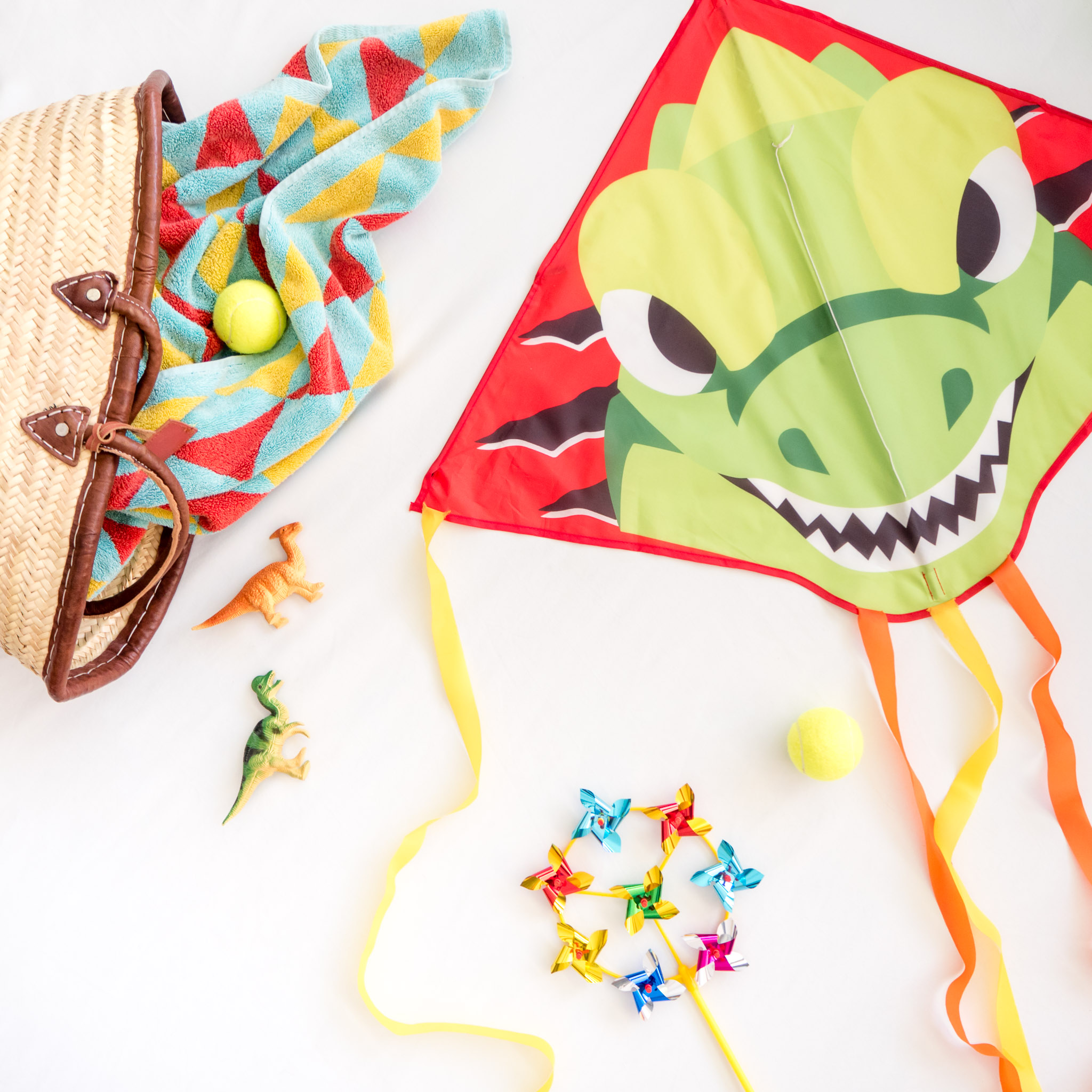 Dinosaur kite by Zoom Kites
